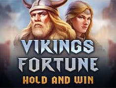 Vikings Fortune: Hold and Win logo
