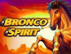 Bronco Spirit logo