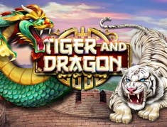 Tiger and Dragon logo