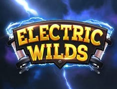 Electric Wilds logo