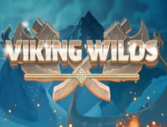 Viking Wilds logo