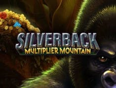 Silverback: Multiplier Mountain logo