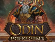 Odin: Protector Of The Realms logo